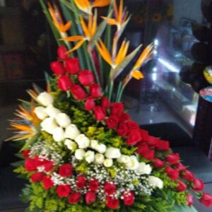 Flores Bello.
