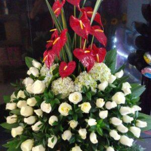 Arreglos Florales Bello.